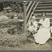 Harriet Hutchins and her pupil, Harriet Huntington, circa 1918