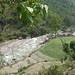 nepal 233