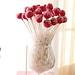 Cake Pop Vase