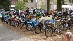 Mopeds aufgereiht: Simson Vogelfamilie
