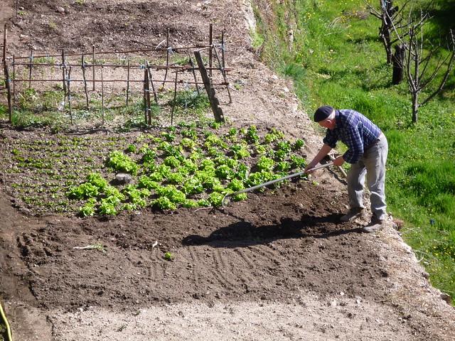 Photo for Bruler dans son jardin