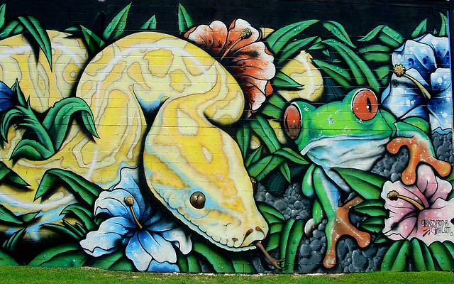 Exotic pet shop mural flickr photo sharing for Austin frog mural