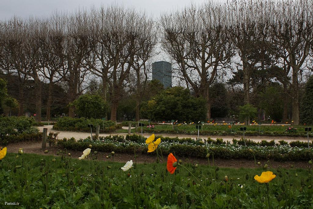 Au fond, derrière les fleurs et les arbres, l'horrible Tour Jussieu