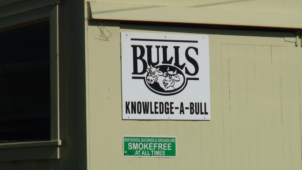 9 Jan 2011 Bulls