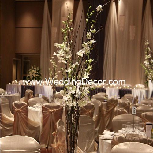Wedding centerpieces birch branches white orchids for Tall wedding centerpieces with branches