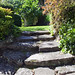 Garden Stairs - Background 63