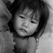 Curious child - bw