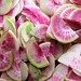 beauty heart radishes
