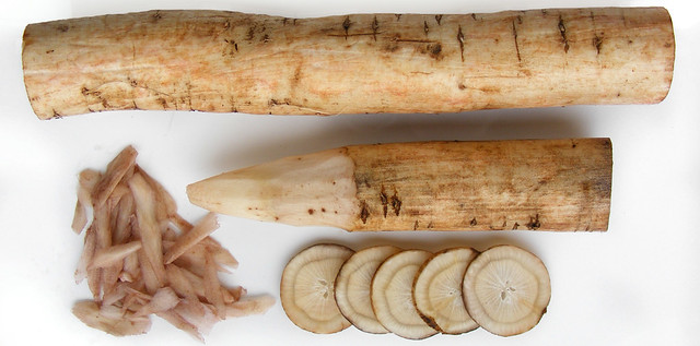 Burdock Root, Gobo oftewel Kliswortel