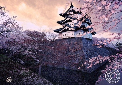 Hirosaki Castle. Spring 2011. (Japan). © Glenn Waters.  Over 8,000 visits to this photo. Thank you. | by Glenn Waters ぐれんin Japan.