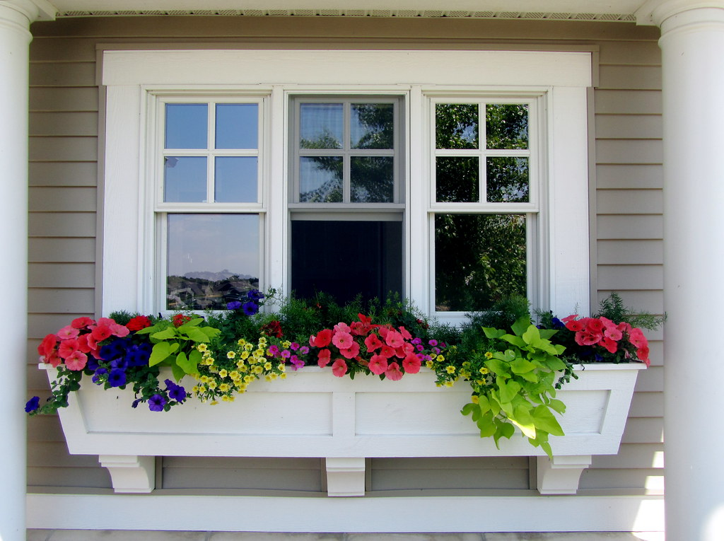 Window box perfection | Now that's what a I call a window ...