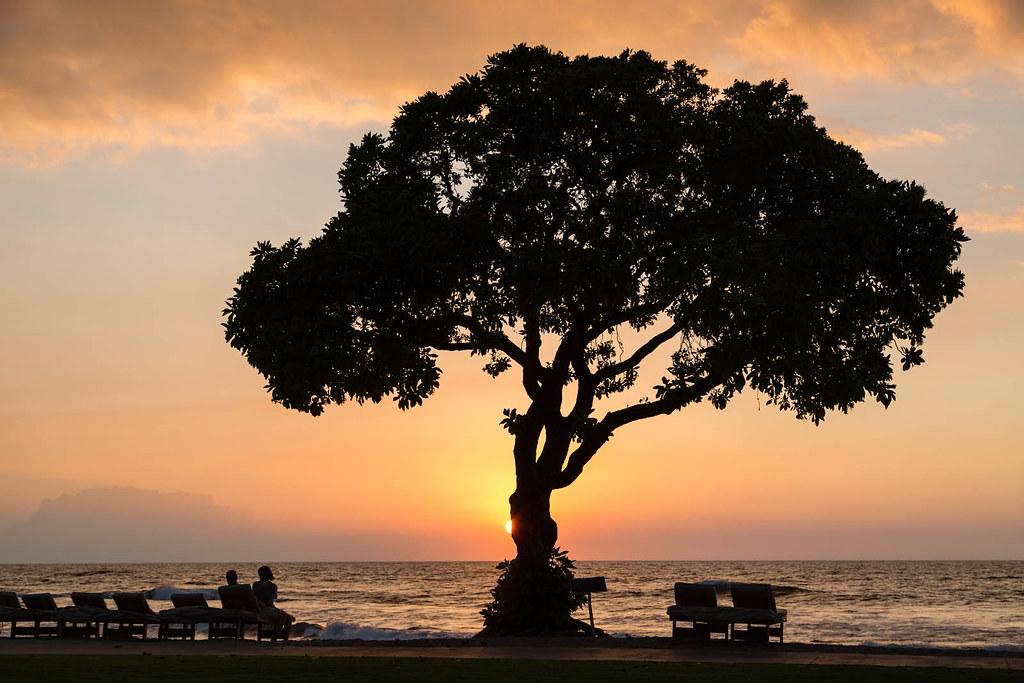 Kailua-kona, Hawaii, hawaiian islands, tropical paradise