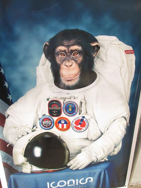 monkey astronaut movie - photo #14