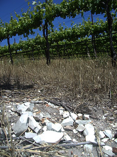 Block 47 Syrah Shale | by AncientPeaks