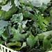Grilled Sweet Potato and Wilted Kale Salad - Gluten-free + Vegan