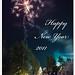 Happy New Year 2011 !!