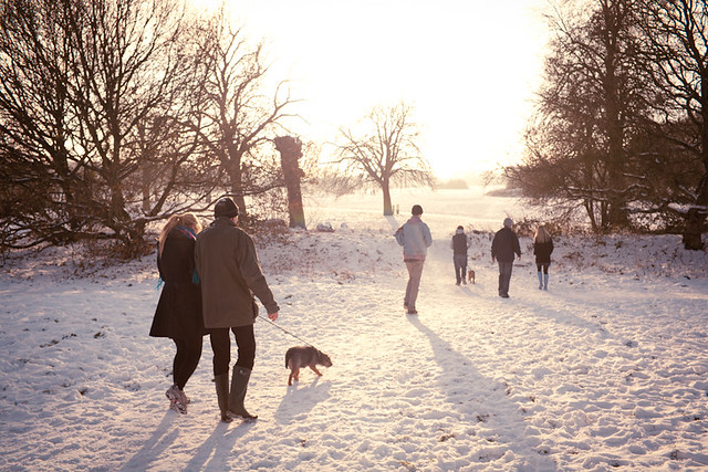 Christmas day walk on Harpenden common.