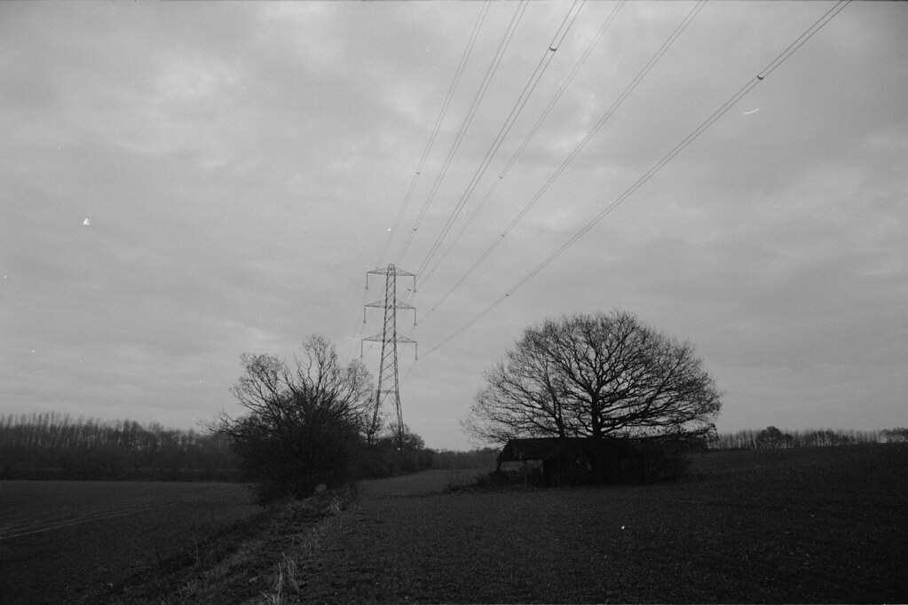 Zenit E FP4 Trees Shed and Pylon 1 | Miles Davis (Smiley ...