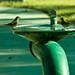 Water cooler talk (22/365)