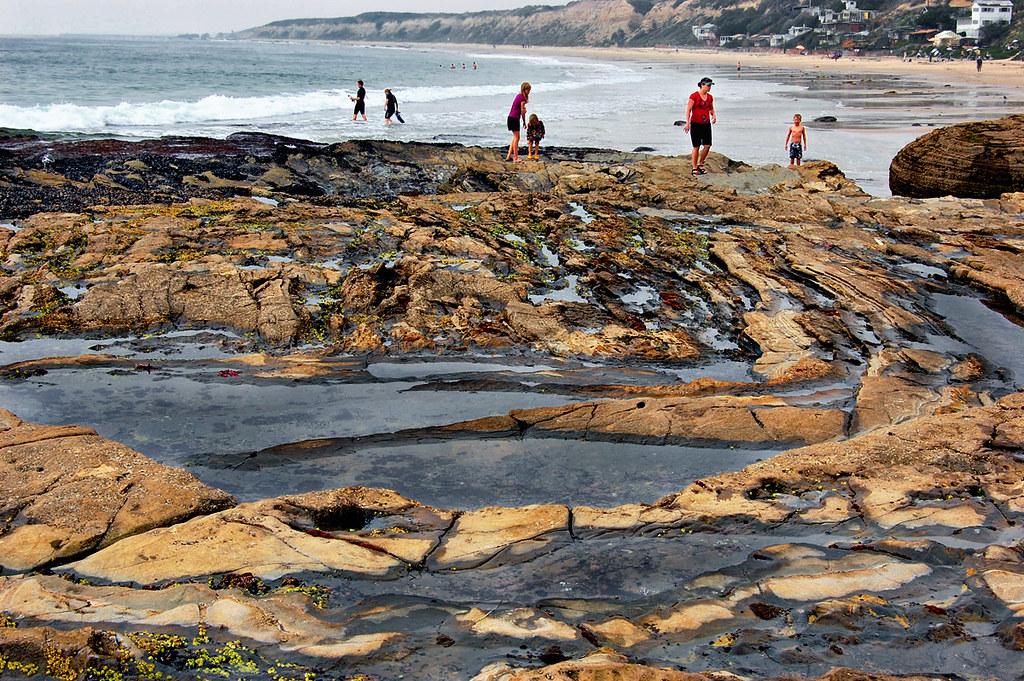 Tide Pools In Laguna Beach Ca