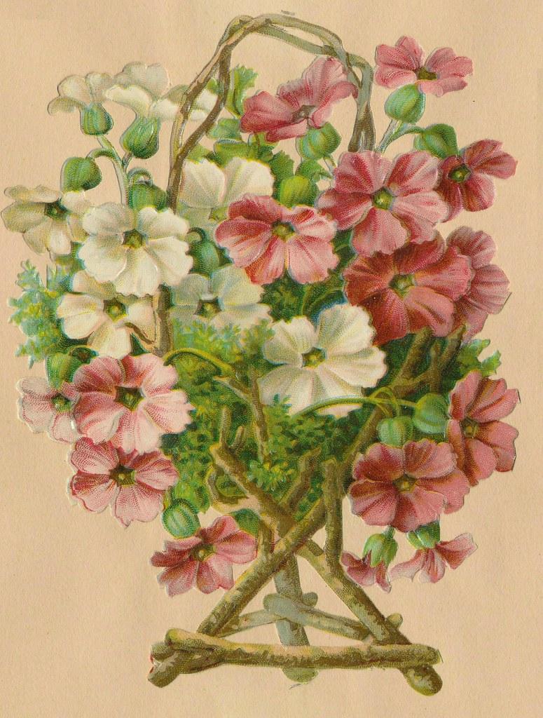 Открытка с цветы