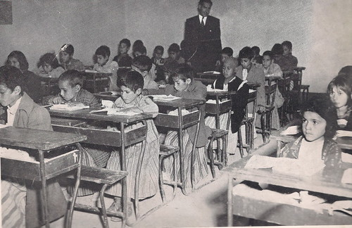 School In iraq    1955