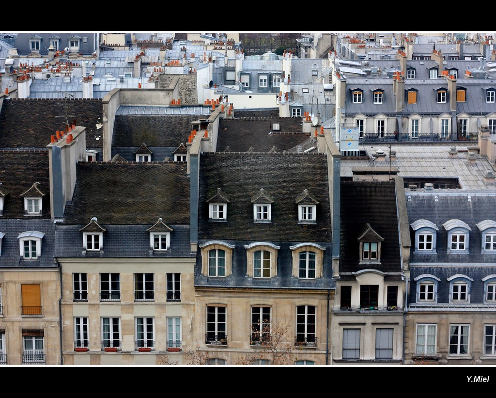 sous les toits de paris roofs of paris yolanda miel. Black Bedroom Furniture Sets. Home Design Ideas
