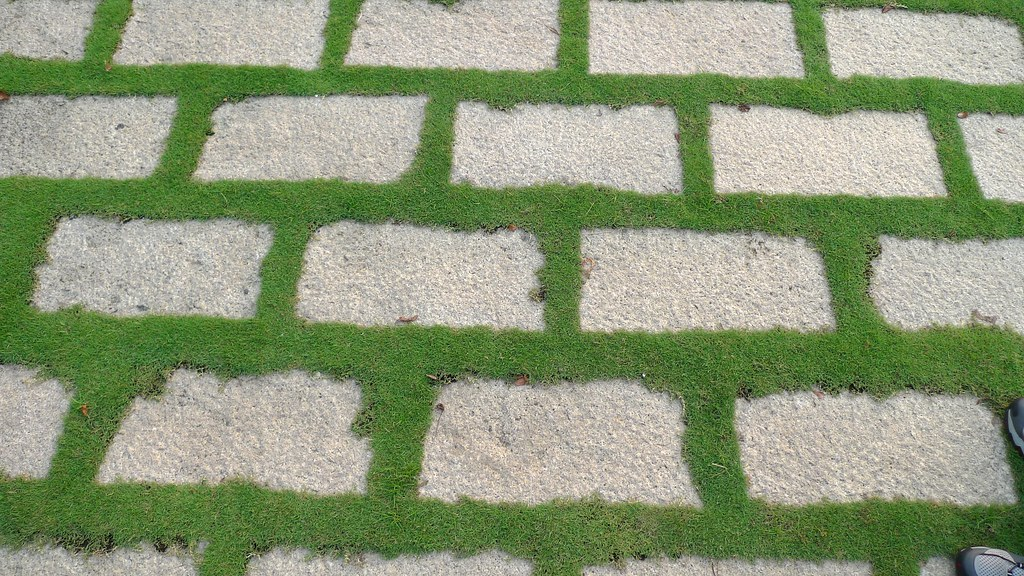 Grass And Brick Texture Goodmami Flickr
