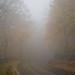 The road to Burkittsville