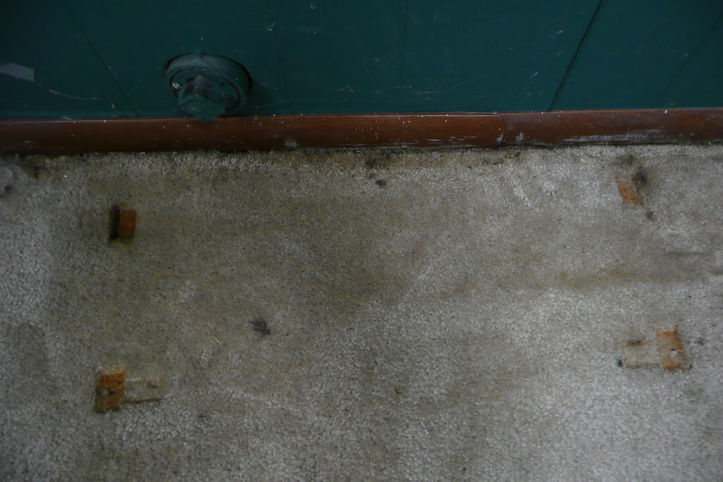 basement problems we found a large damp spot on the carpet