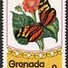 GREN GRI 81