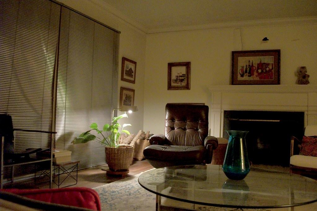 Blinds For Living Room Bay Window
