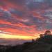 Mercer Sunrise