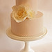 Petite rose and lace wedding cake
