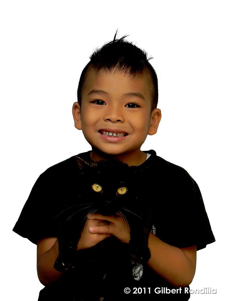 adopting a shelter cat tips