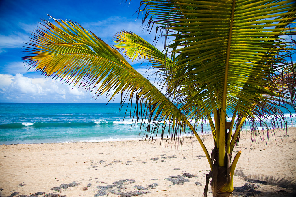Best Puerto Rico Hotels On The Beach Travel Blog