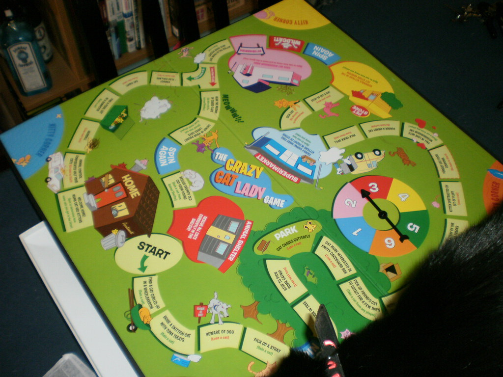 The Crazy Cat Lady Board game | Yes, you can see a bit of ...