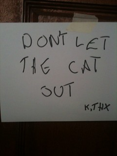 Kitty Containment: A global issue | by passiveaggressivenotes