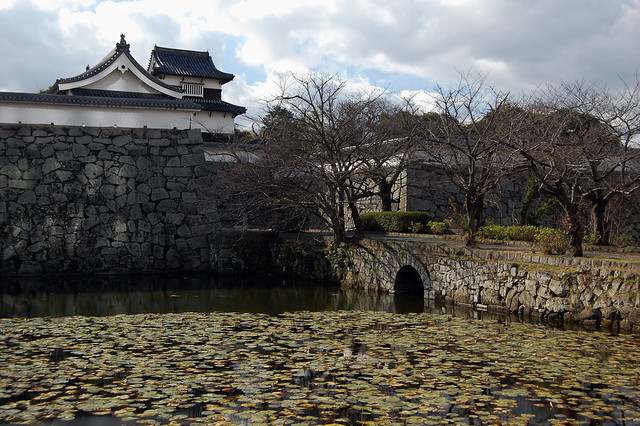 Fukuoka Castle & Moat  Flickr - Photo Sharing!