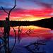 """""""Walking on a Sunset""""  Norway Lake, Michigan's ottawa National Forest"""