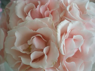 ~Rose Snowball~ | by ~Romantic~Vintage Home~