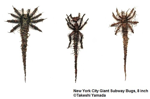 New York City Giant Subway Bugs | by Dr. Takeshi Yamada.