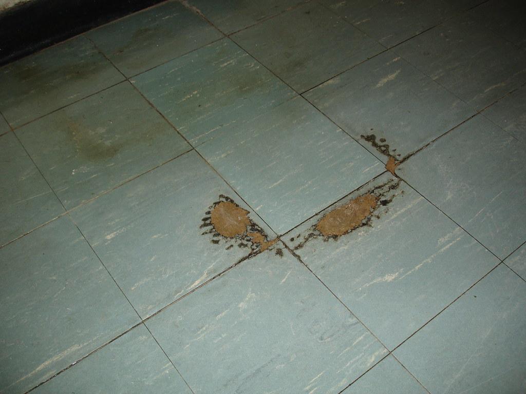 Asbestos Floor Tile Damaged Asbestos 9x9 Floor Tile Small Area Of 9 Inch Squar