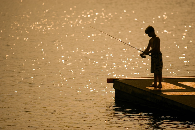 Old hickory lake in mt juliet tn a child fishes from a for Old hickory lake fishing