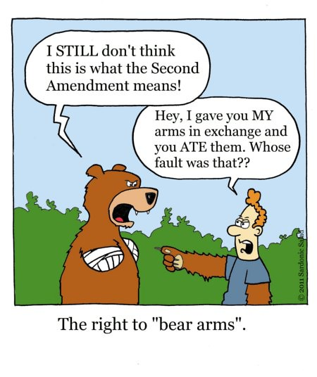 Right to bear arms essay