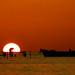 the sunset bill..