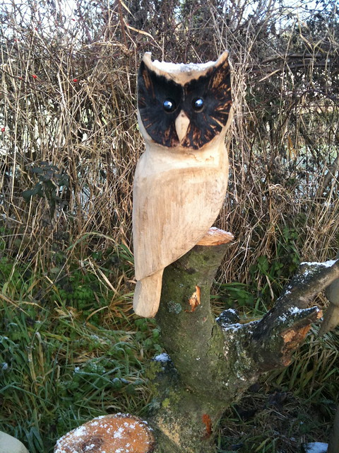 Oak owl chainsaw carving flickr photo sharing