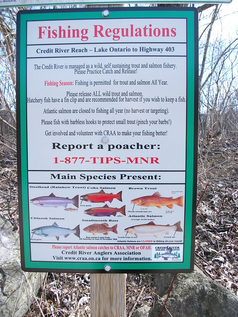 Flickr photo sharing for Fishing license requirements