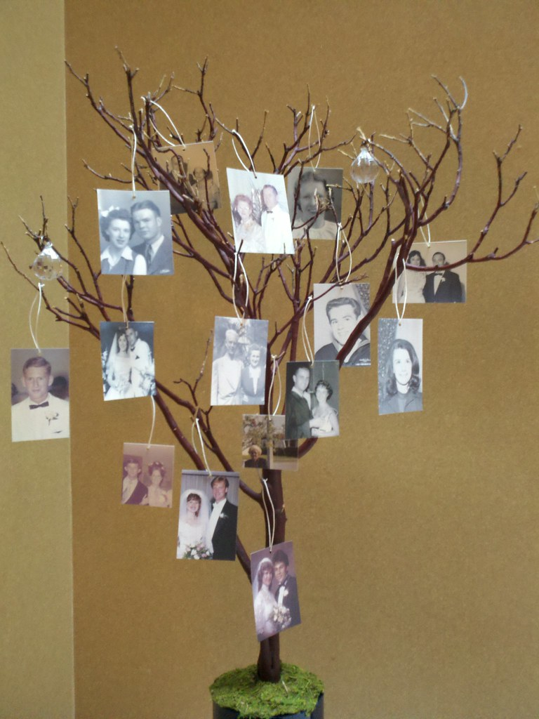 Manzanita branch family tree made from a