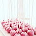 Plated Cake Pops